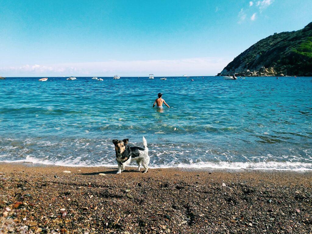 Elba, spiaggia di Nisporto