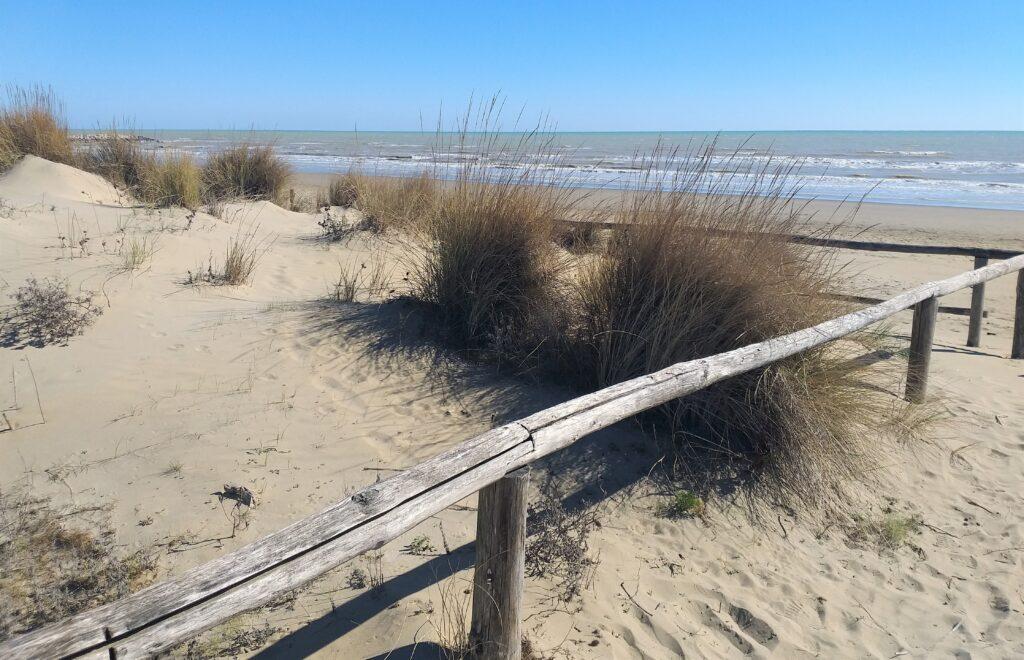 Cavallino-Treporti, spiaggia libera.